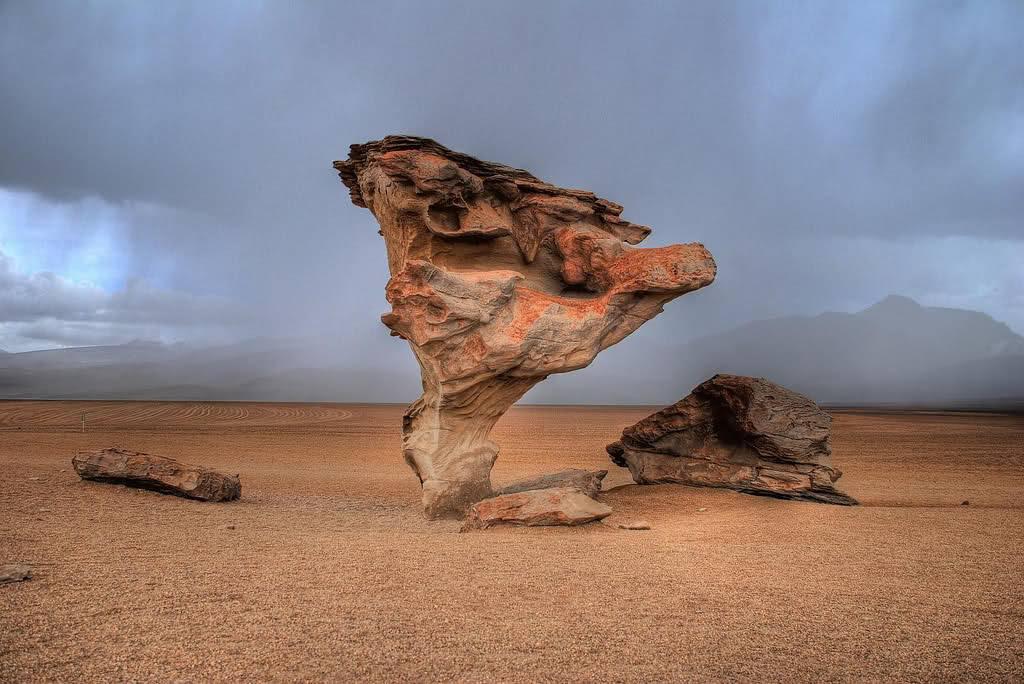 Arboles de Piedra 6