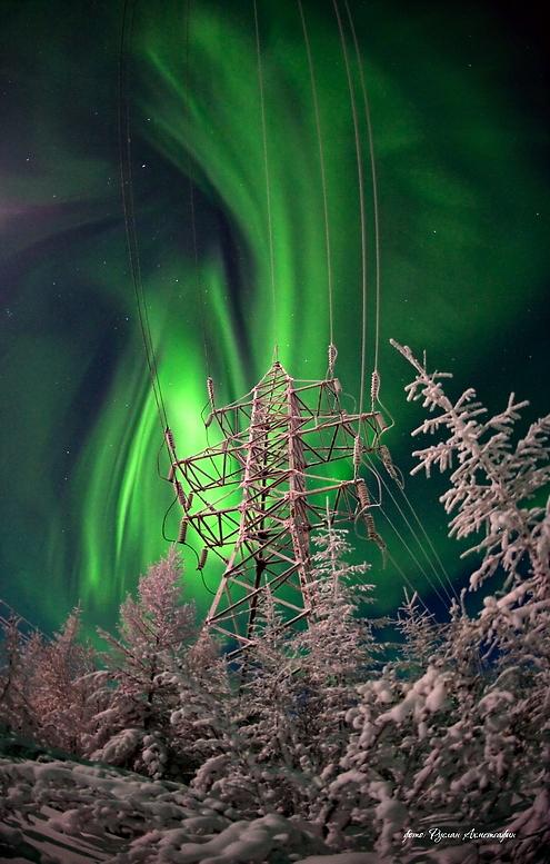 Auroras en un paisaje congelado 2