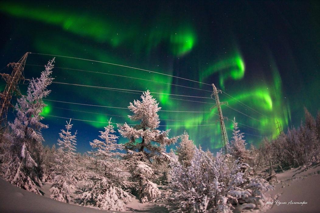 Auroras en un paisaje congelado 3