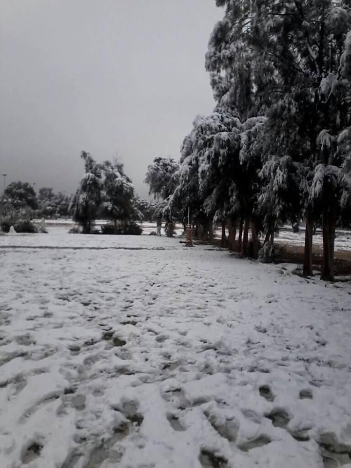 Nieve en Arabia 3