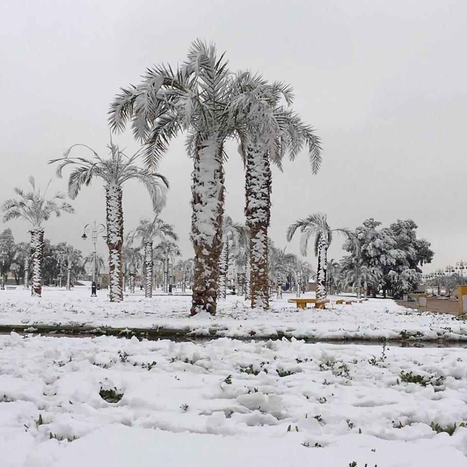 Nieve en Arabia 7