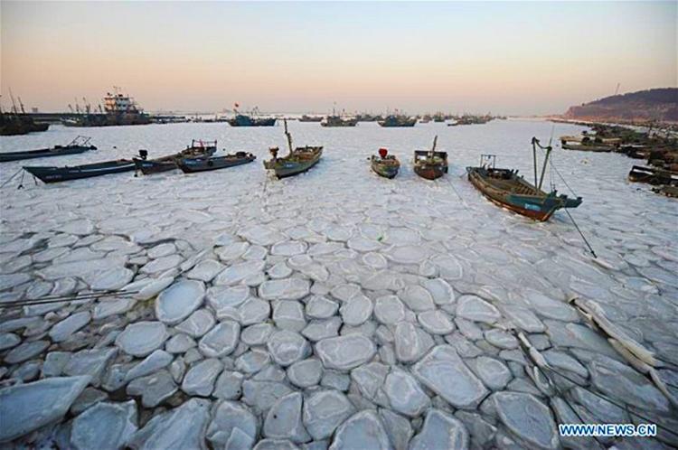 Frio severo en China 4