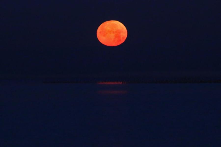 Luna llena 4