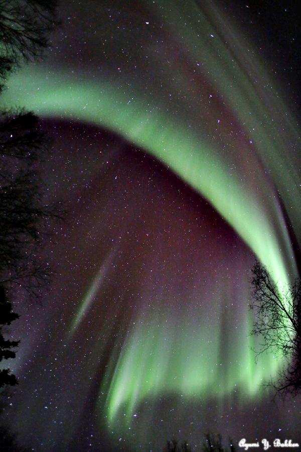 Auroras olas 1