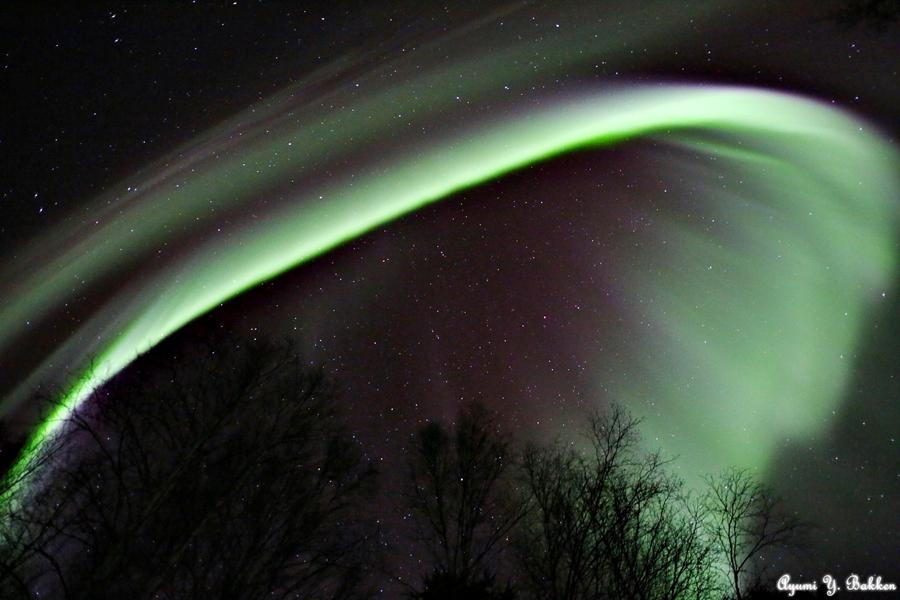 Auroras oleajes 1