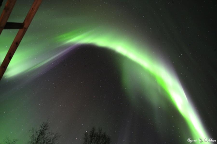 Auroras oleajes