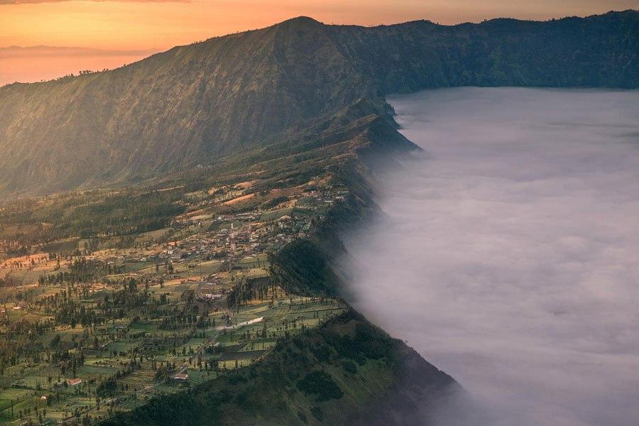 En la niebla 1