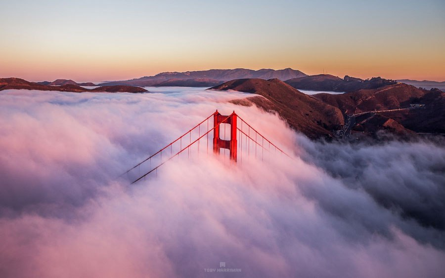 En la niebla 2