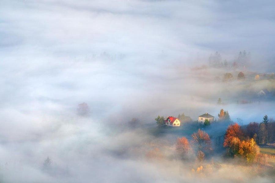En la niebla 3