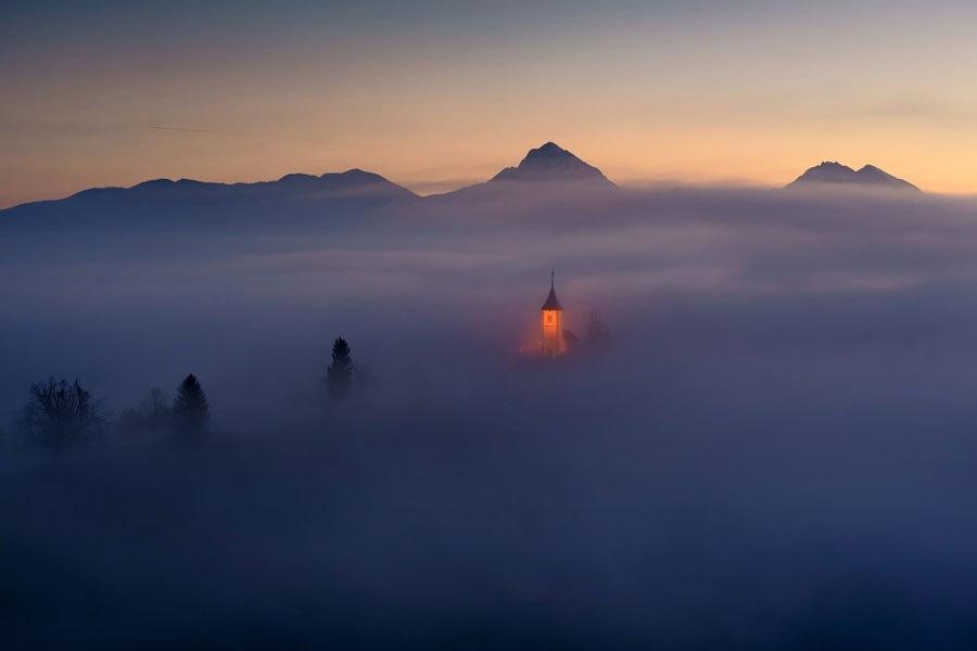 En la niebla 5