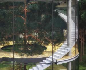 Casa del arbol 2