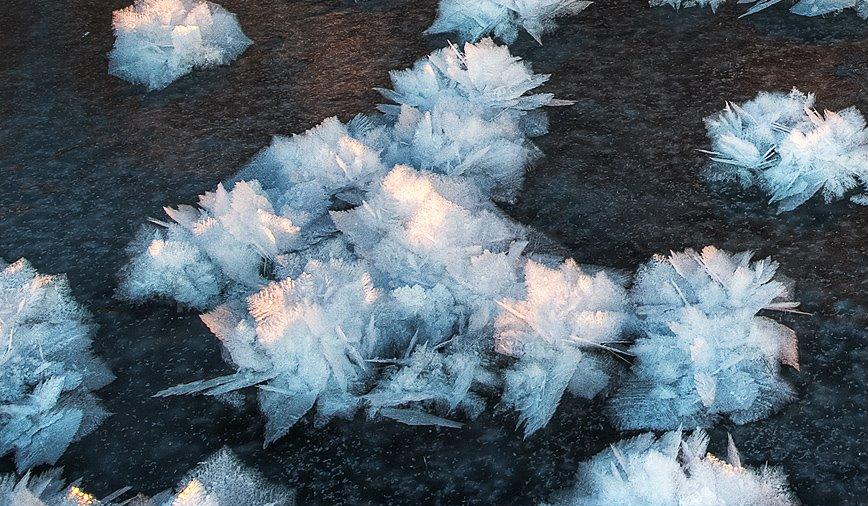 Flores de hielo 2