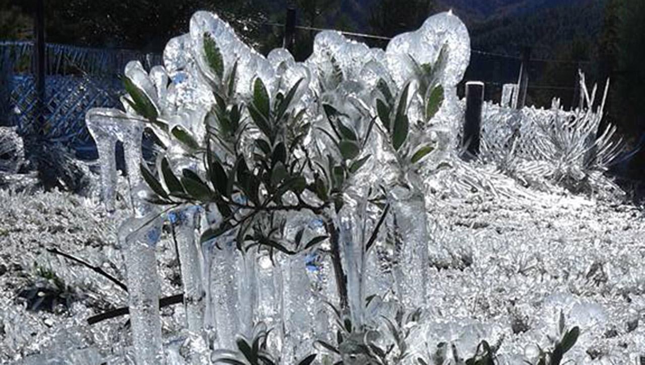 Heladas: 7 grados bajo cero en Villa Meliquina, Neuquén
