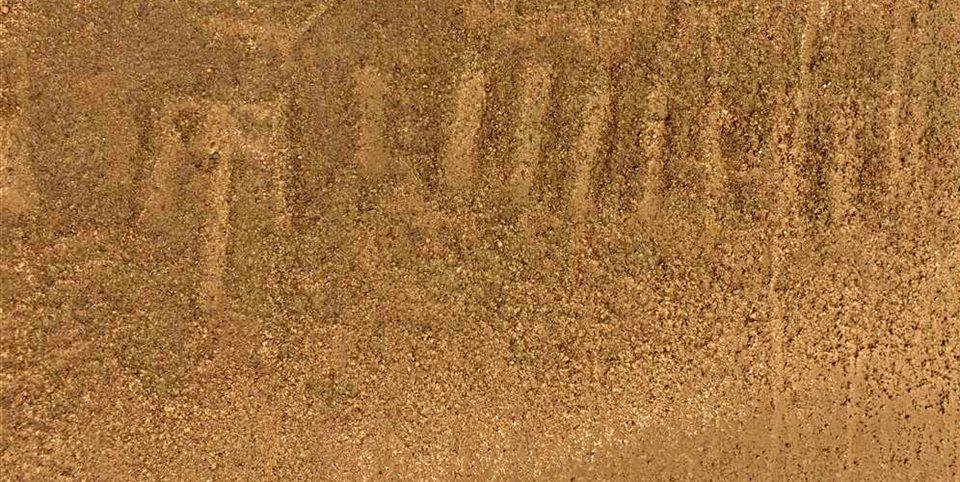nuevo geoglifo en desierto de Nasca