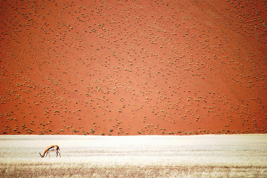 national-geographic-travel 5