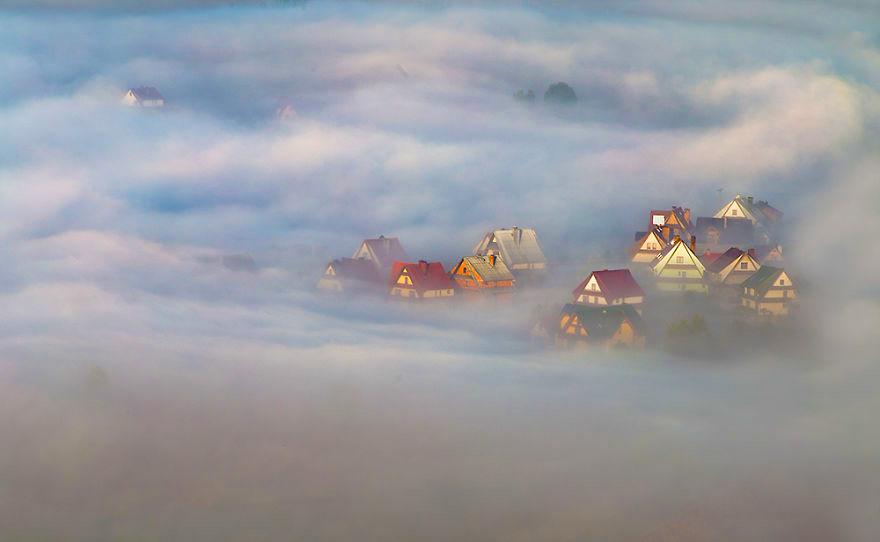 Niebla en polonia
