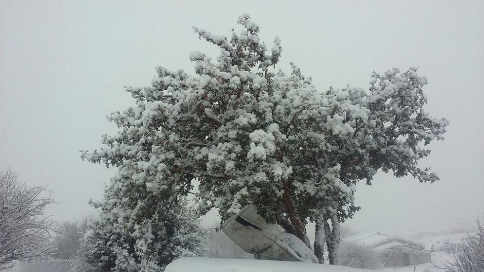 Nieve en las altas cumbres 2