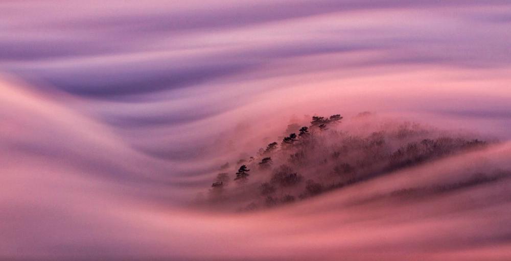 niebla-4