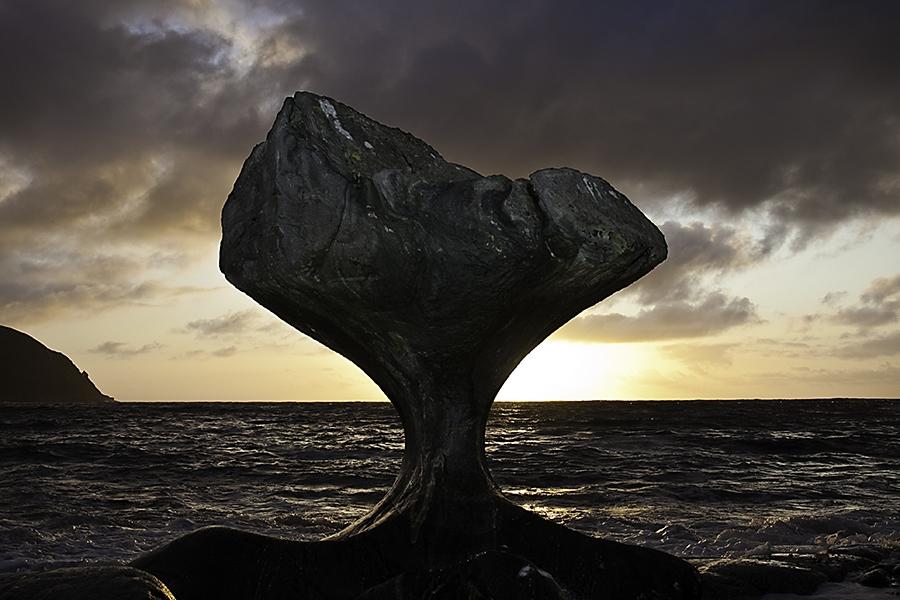 roca-66