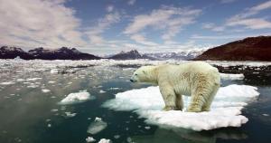 calentamiento-global-11