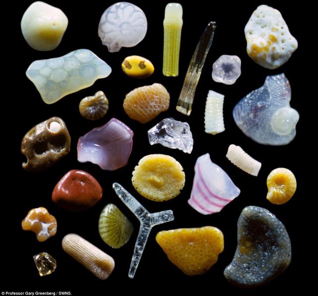 granos-de-arena-al-microscopio-3